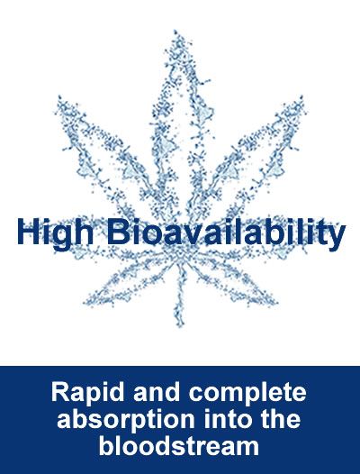 High Bioavailability